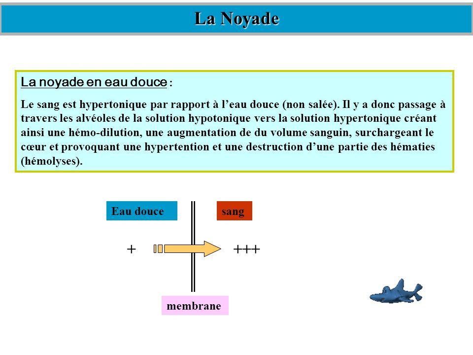 La Noyade +++ + La noyade en eau douce :