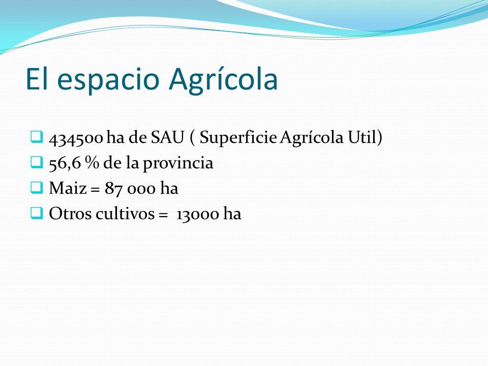 El espacio Agrícola 434500 ha de SAU ( Superficie Agrícola Util)