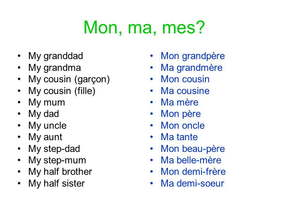 Mon, ma, mes My granddad My grandma My cousin (garçon)