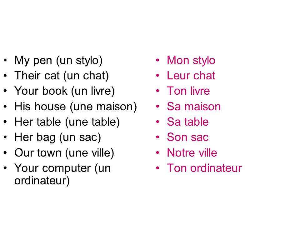 My pen (un stylo) Their cat (un chat) Your book (un livre) His house (une maison) Her table (une table)