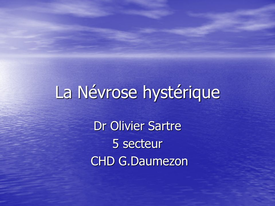 Dr Olivier Sartre 5 secteur CHD G.Daumezon