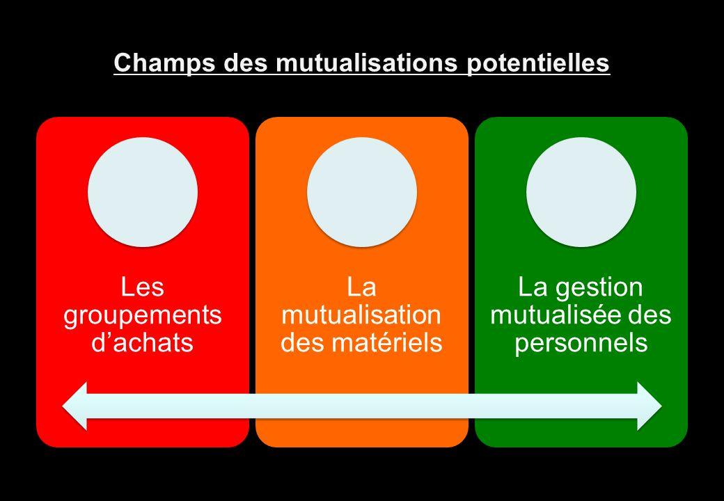 Champs des mutualisations potentielles
