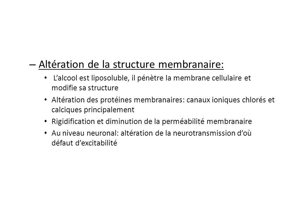 Altération de la structure membranaire: