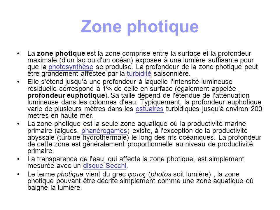 Zone photique