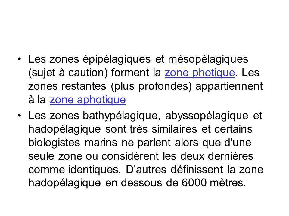 Les zones épipélagiques et mésopélagiques (sujet à caution) forment la zone photique. Les zones restantes (plus profondes) appartiennent à la zone aphotique