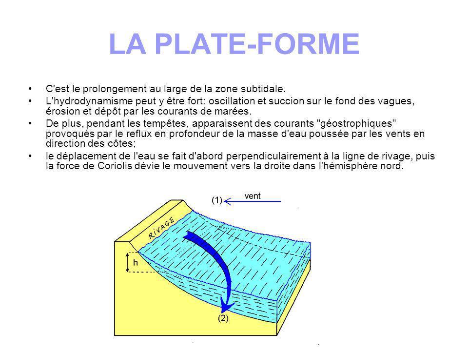 LA PLATE-FORME C est le prolongement au large de la zone subtidale.