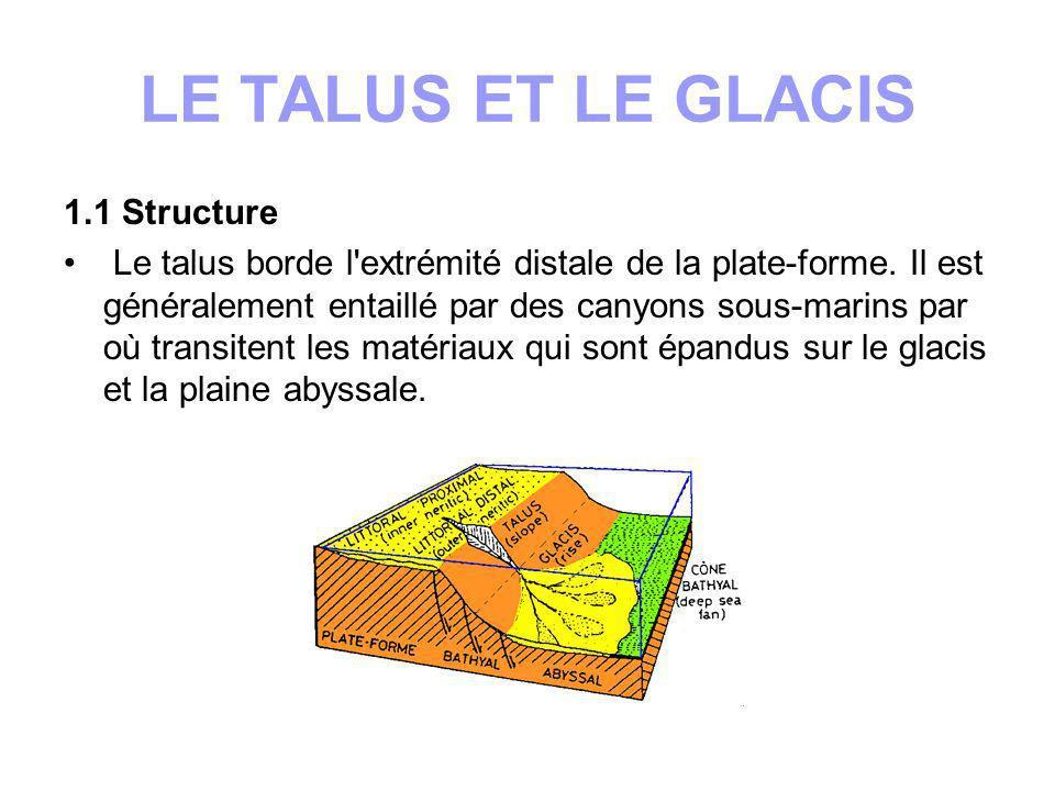 LE TALUS ET LE GLACIS 1.1 Structure