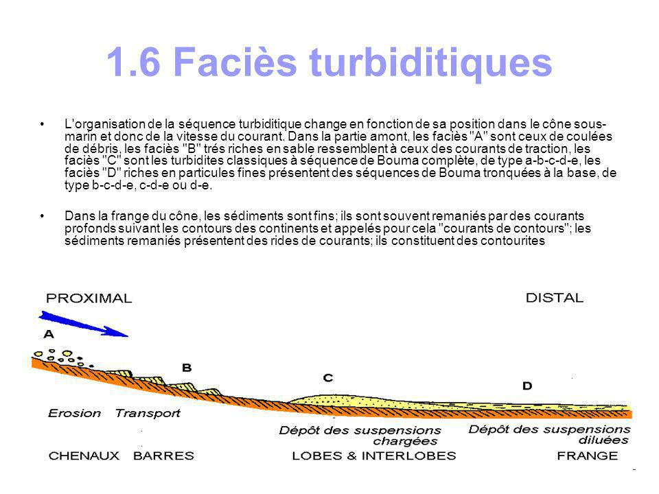 1.6 Faciès turbiditiques