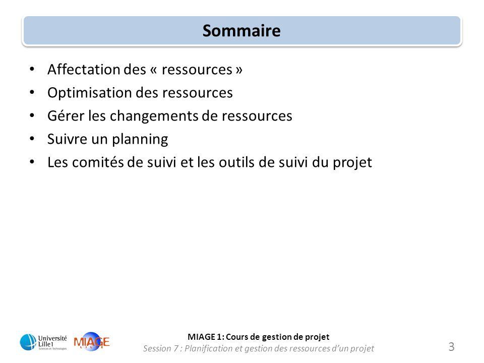 Sommaire Affectation des « ressources » Optimisation des ressources
