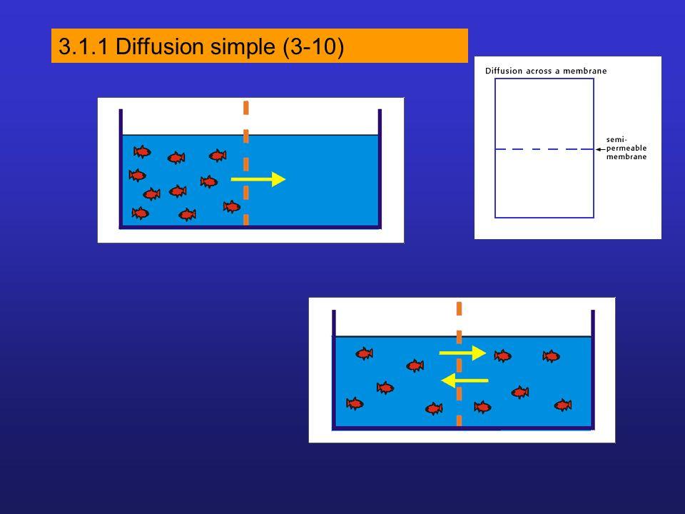 3.1.1 Diffusion simple (3-10)