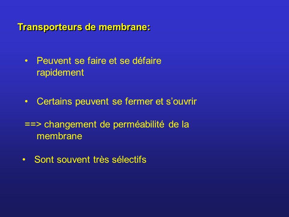 Transporteurs de membrane: