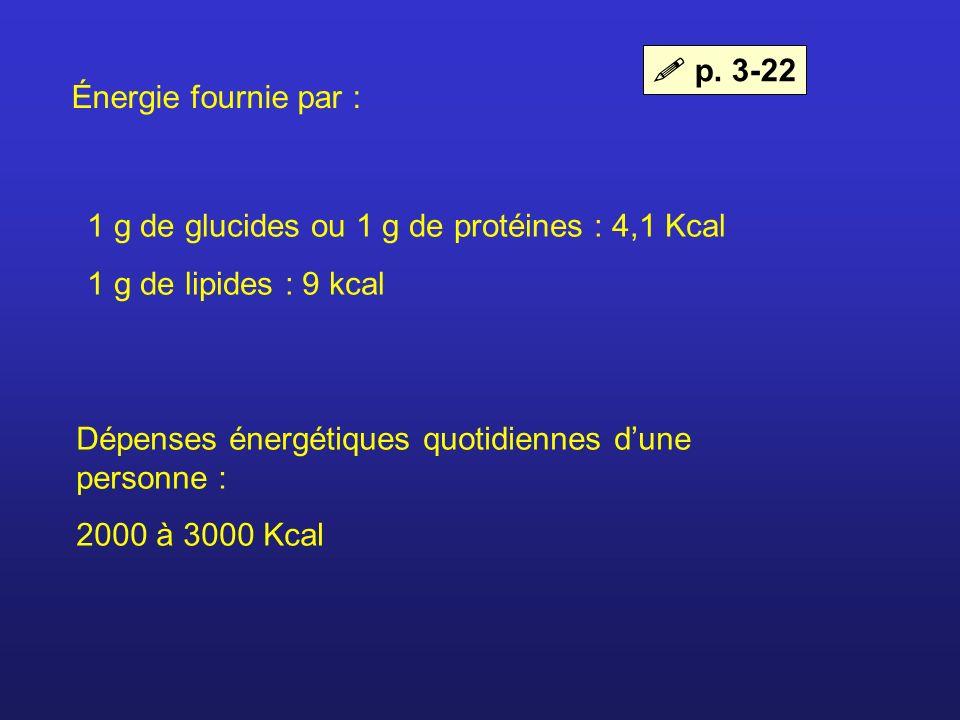  p. 3-22 Énergie fournie par : 1 g de glucides ou 1 g de protéines : 4,1 Kcal. 1 g de lipides : 9 kcal.