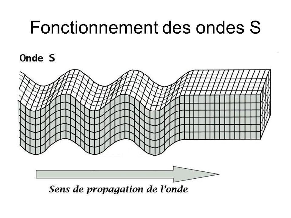 Fonctionnement des ondes S