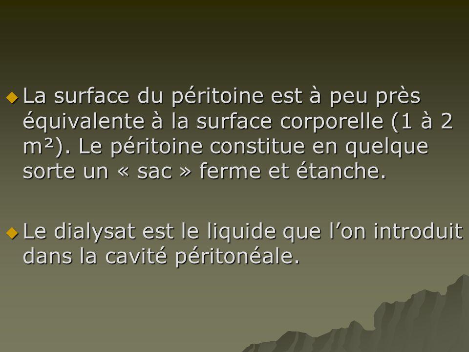 La surface du péritoine est à peu près équivalente à la surface corporelle (1 à 2 m²). Le péritoine constitue en quelque sorte un « sac » ferme et étanche.