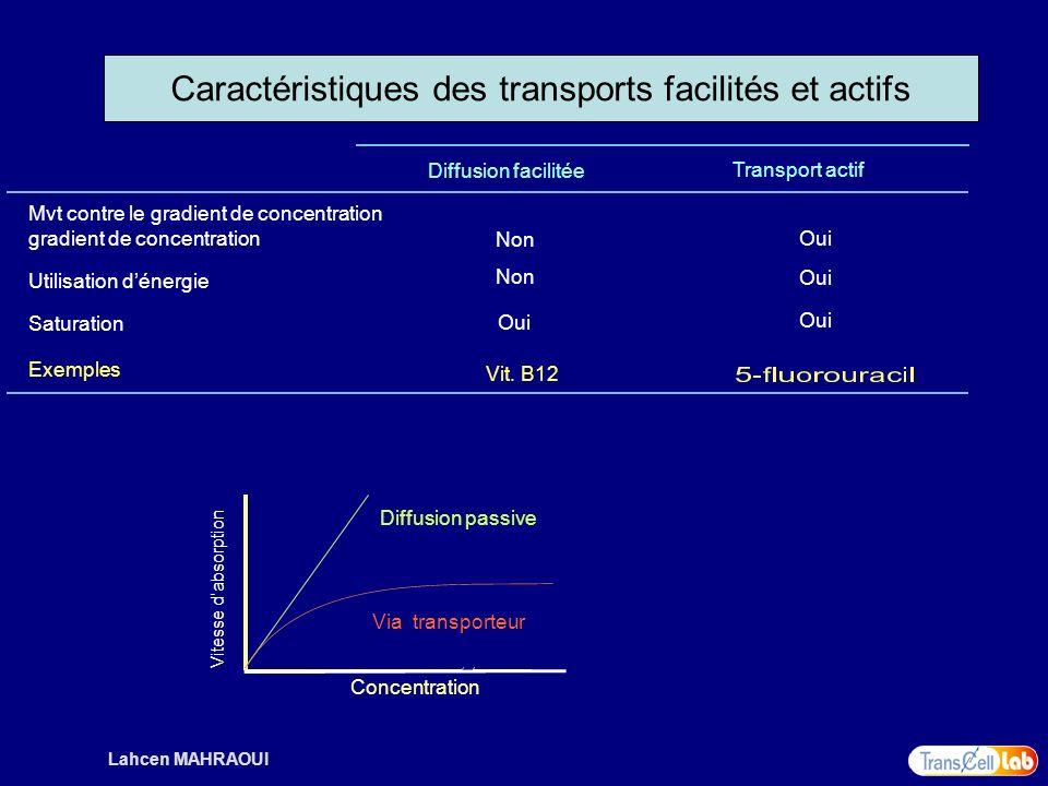 Caractéristiques des transports facilités et actifs