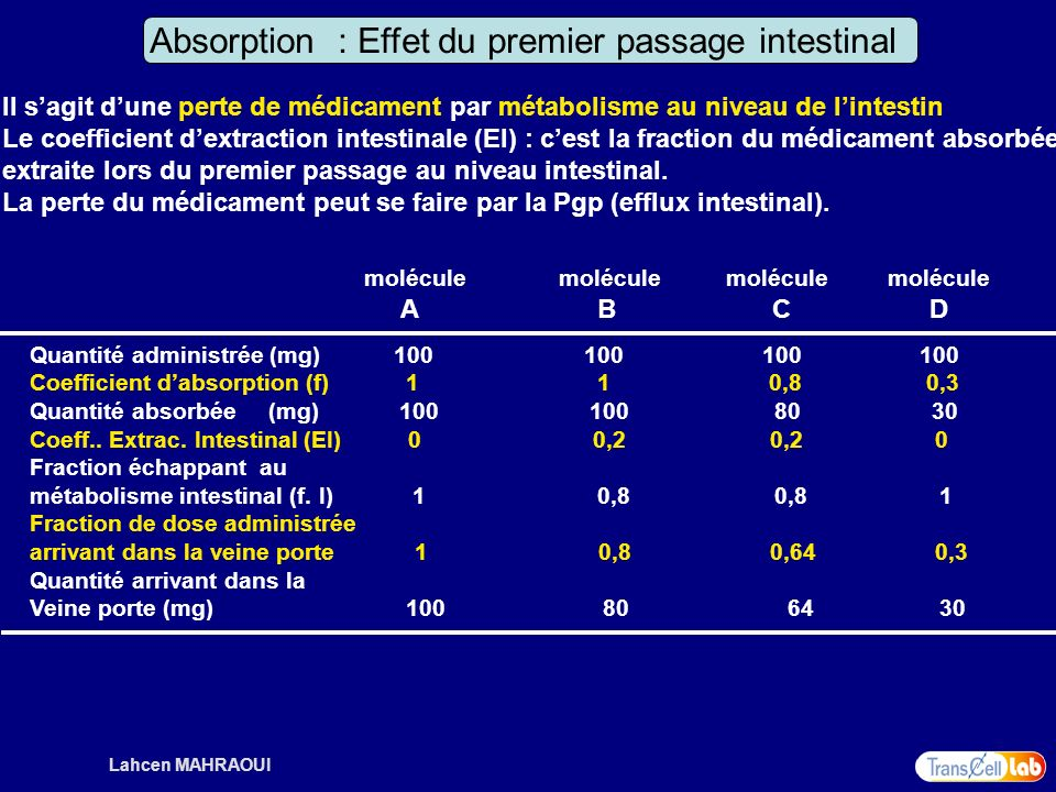 Absorption : Effet du premier passage intestinal