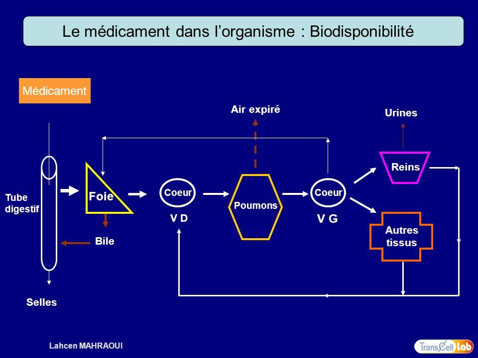 Le médicament dans l'organisme : Biodisponibilité