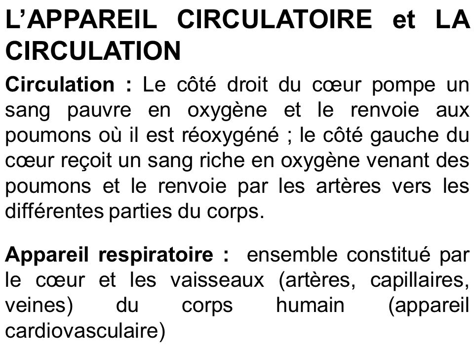 L'APPAREIL CIRCULATOIRE et LA CIRCULATION