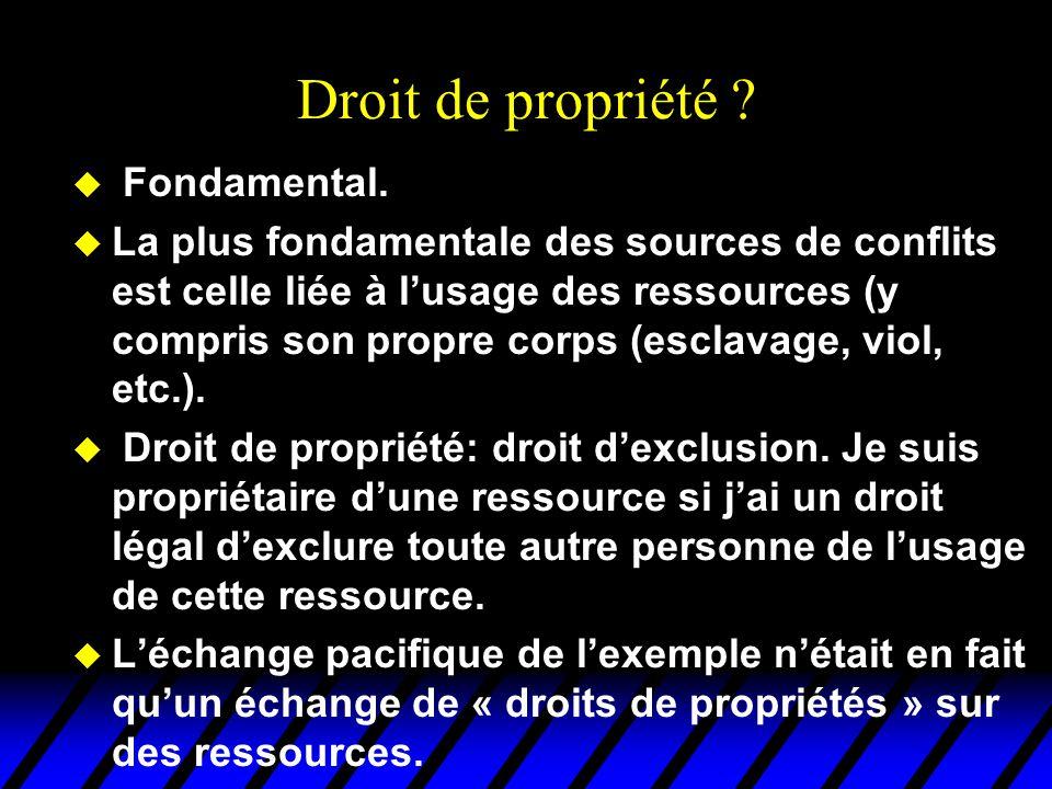 Droit de propriété Fondamental.