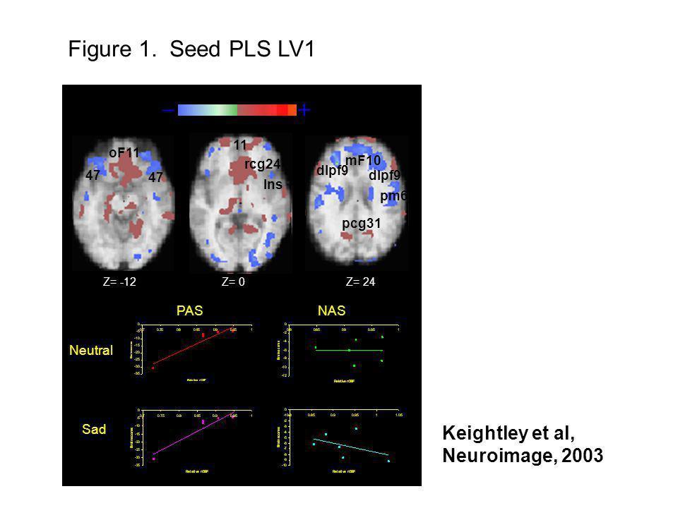 Figure 1. Seed PLS LV1 – + Keightley et al, Neuroimage, 2003 PAS NAS