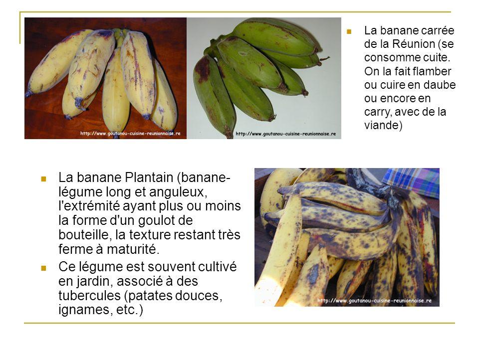 La banane carrée de la Réunion (se consomme cuite