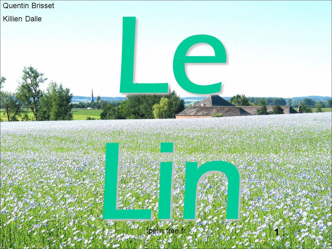 Le Lin Quentin Brisset Killien Dalle tpelin.free.fr 1