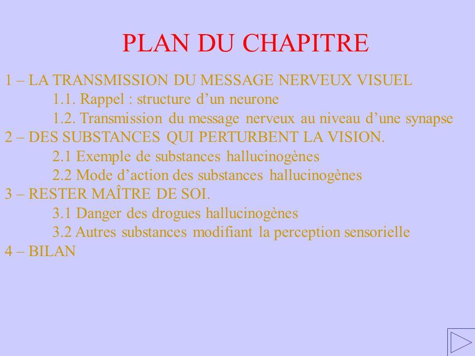 PLAN DU CHAPITRE 1 – LA TRANSMISSION DU MESSAGE NERVEUX VISUEL
