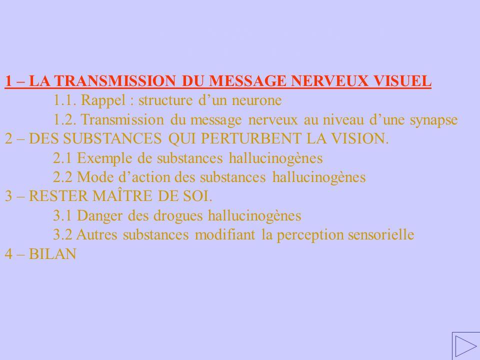 1 – LA TRANSMISSION DU MESSAGE NERVEUX VISUEL