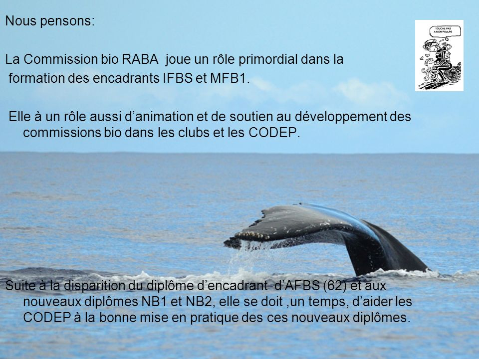 Nous pensons: La Commission bio RABA joue un rôle primordial dans la. formation des encadrants IFBS et MFB1.