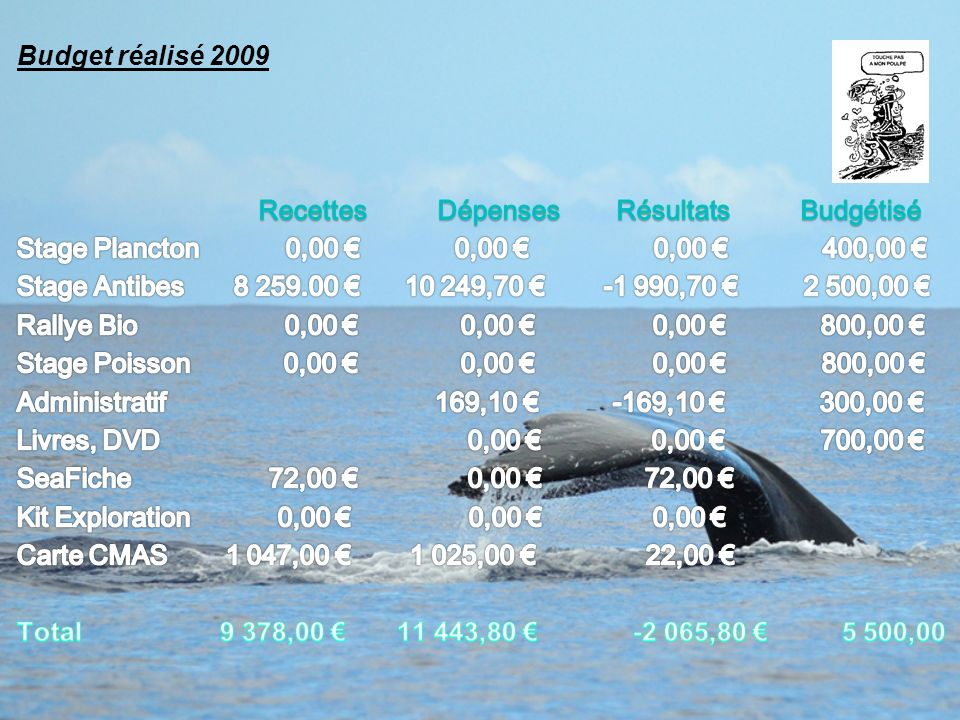 Budget réalisé 2009 Recettes Dépenses Résultats Budgétisé.