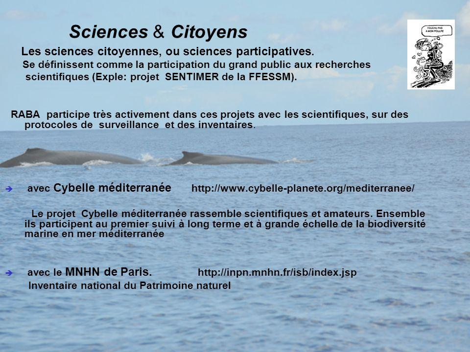 Sciences & Citoyens Les sciences citoyennes, ou sciences participatives. Se définissent comme la participation du grand public aux recherches.