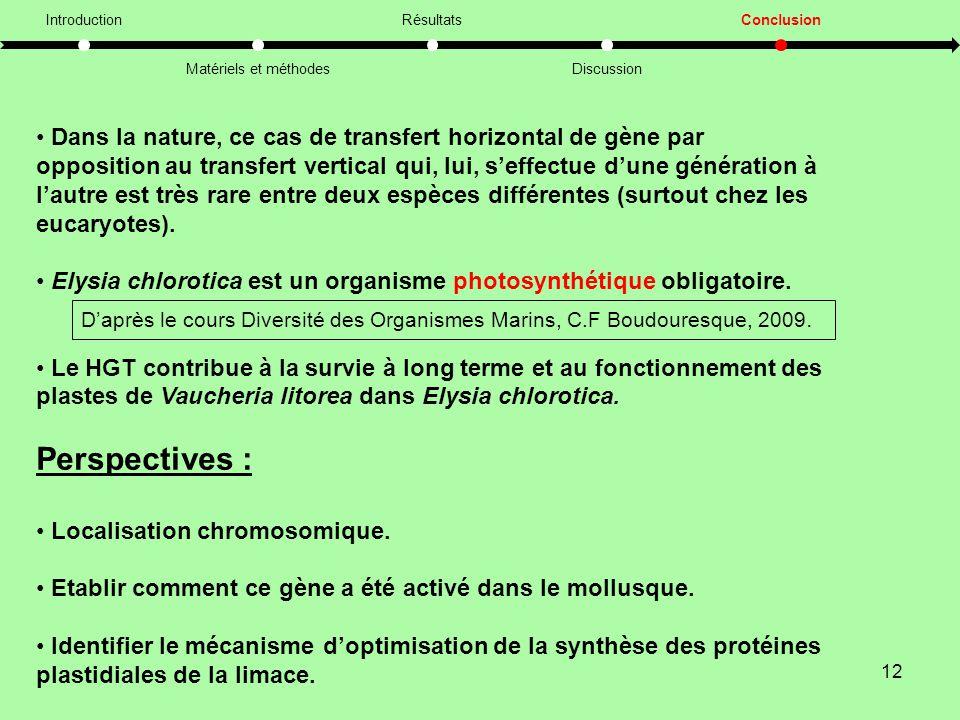 Introduction Matériels et méthodes. Résultats. Discussion. Conclusion.
