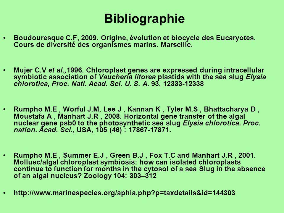 Bibliographie Boudouresque C.F, 2009. Origine, évolution et biocycle des Eucaryotes. Cours de diversité des organismes marins. Marseille.