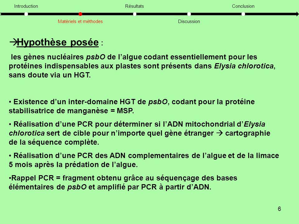 Introduction Matériels et méthodes. Résultats. Discussion. Conclusion. Hypothèse posée :