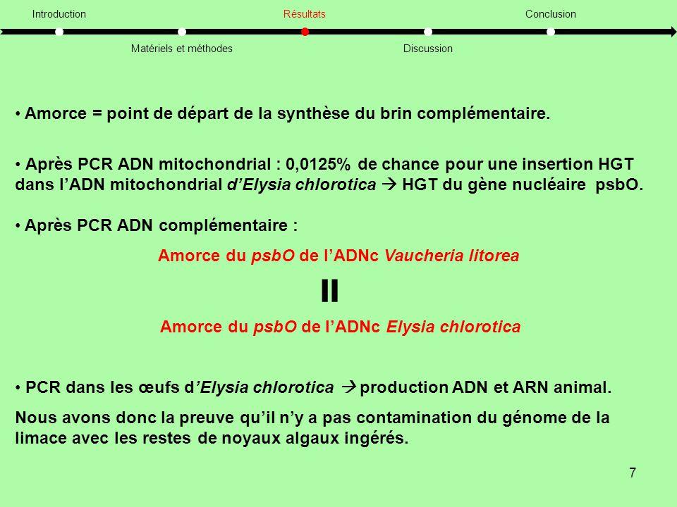 = Amorce = point de départ de la synthèse du brin complémentaire.