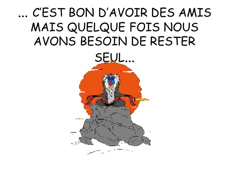 ... C'EST BON D'AVOIR DES AMIS MAIS QUELQUE FOIS NOUS AVONS BESOIN DE RESTER SEUL...