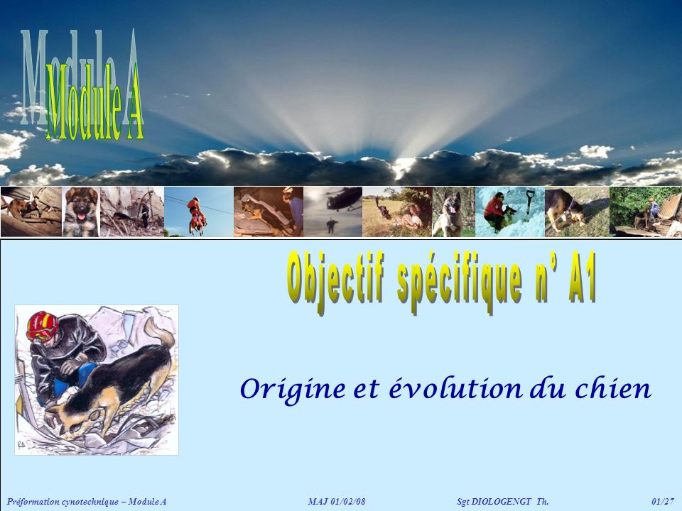 Origine et évolution du chien