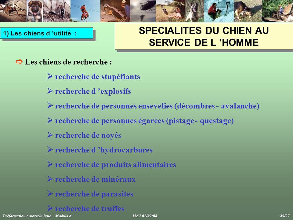 SPECIALITES DU CHIEN AU SERVICE DE L 'HOMME