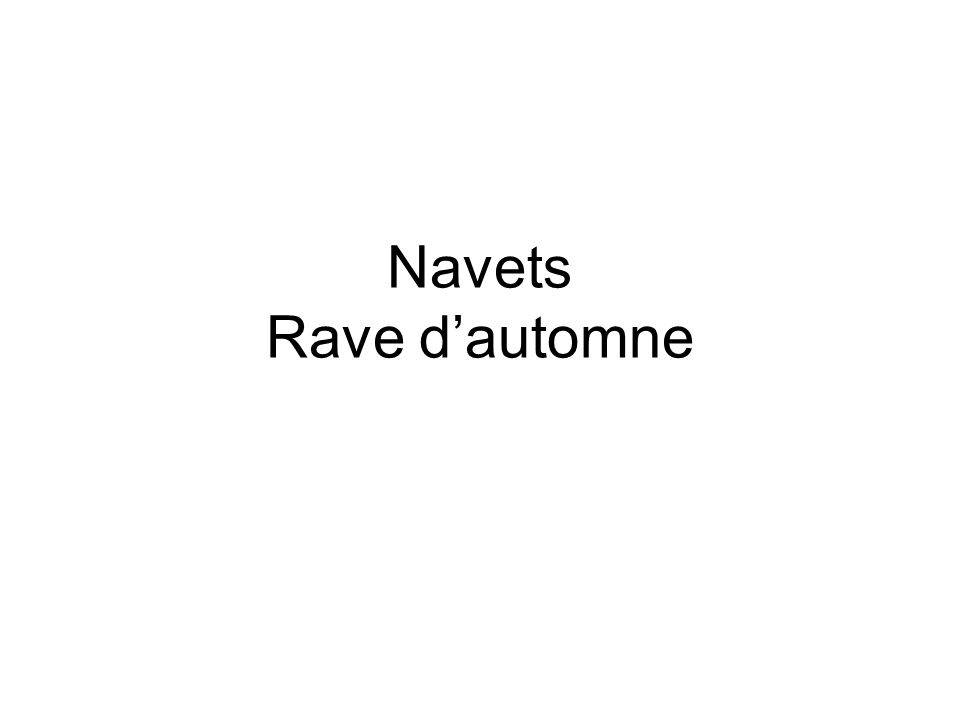 Navets Rave d'automne