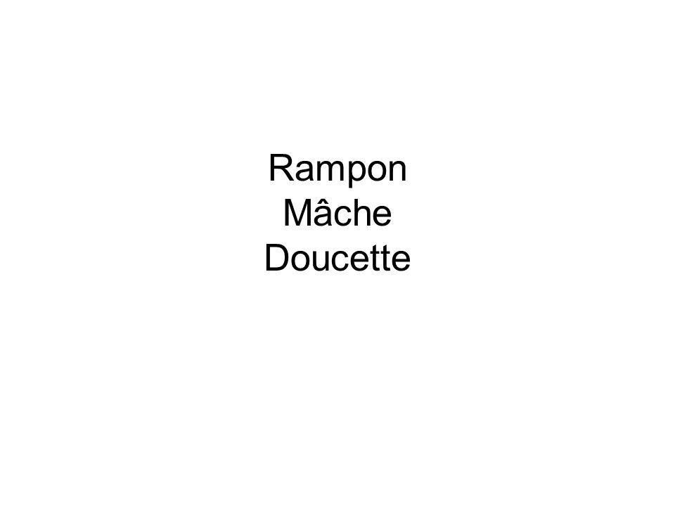 Rampon Mâche Doucette