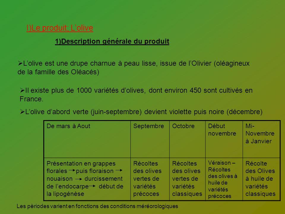 I)Le produit; L'olive 1)Description générale du produit