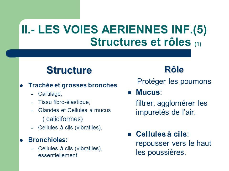 II.- LES VOIES AERIENNES INF.(5) Structures et rôles (1)