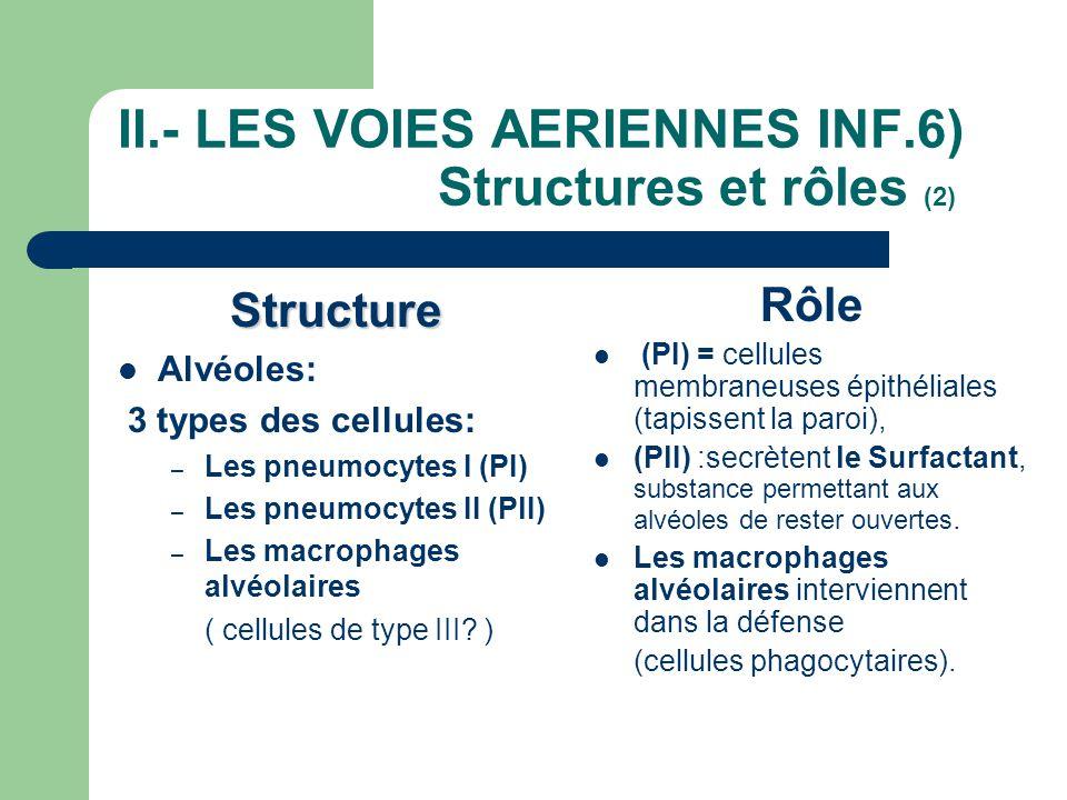 II.- LES VOIES AERIENNES INF.6) Structures et rôles (2)