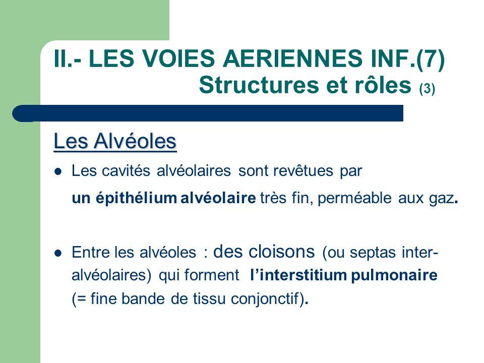 II.- LES VOIES AERIENNES INF.(7) Structures et rôles (3)