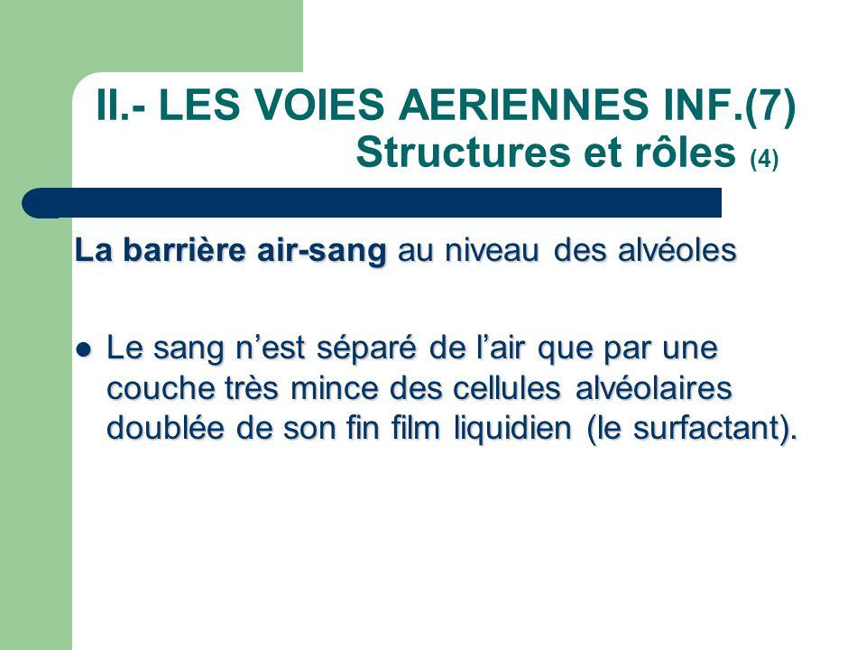 II.- LES VOIES AERIENNES INF.(7) Structures et rôles (4)