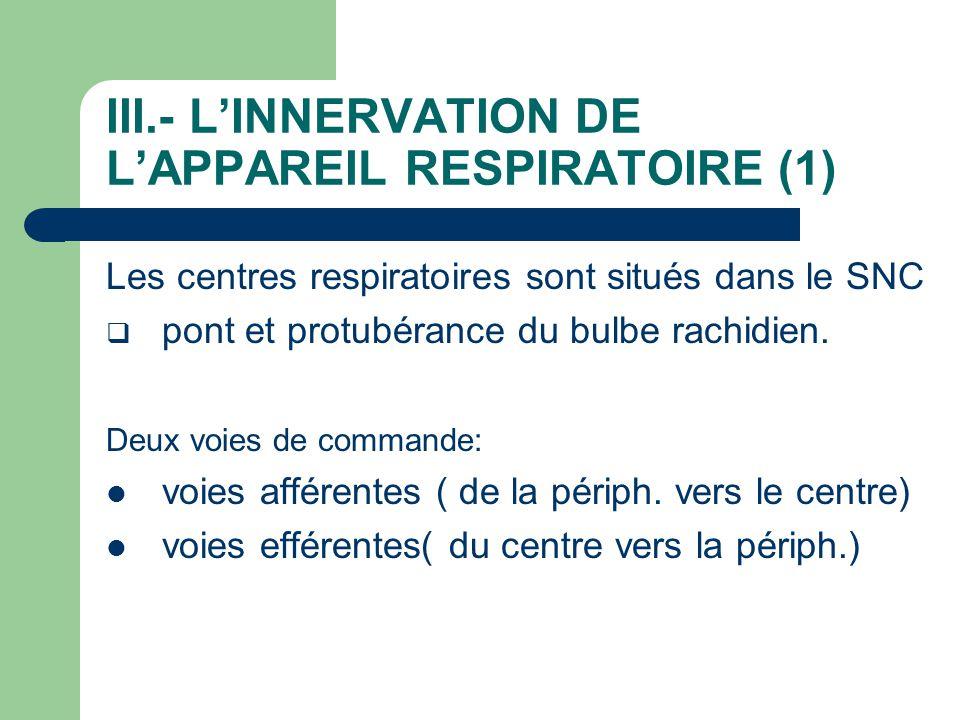 III.- L'INNERVATION DE L'APPAREIL RESPIRATOIRE (1)