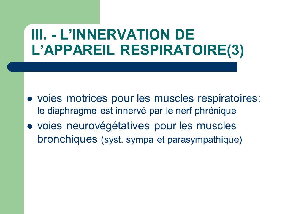 III. - L'INNERVATION DE L'APPAREIL RESPIRATOIRE(3)
