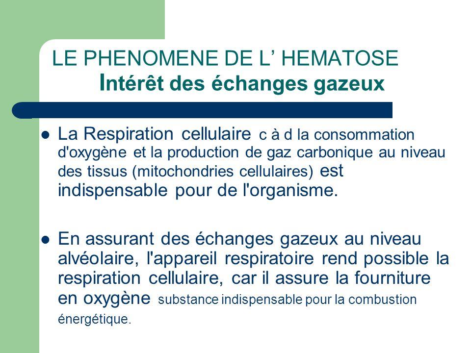 LE PHENOMENE DE L' HEMATOSE Intérêt des échanges gazeux