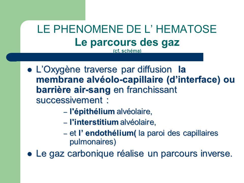 LE PHENOMENE DE L' HEMATOSE Le parcours des gaz (cf. schéma)