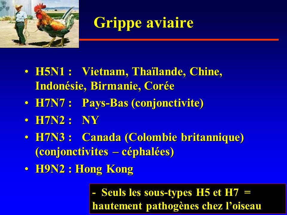 Grippe aviaire H5N1 : Vietnam, Thaïlande, Chine, Indonésie, Birmanie, Corée. H7N7 : Pays-Bas (conjonctivite)